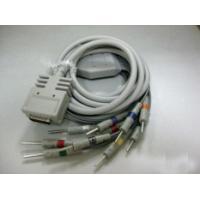 Burdick 10 leads EKG cable with Din type end ,IEC,EK-10