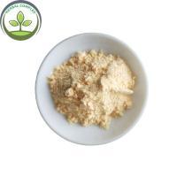 honeydew melon powder  buy powdered musk melon  best health benefits mixed drinks supplement bulk bubble tea powder