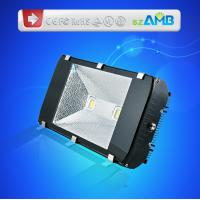 200W IP65 High Power Led Outdoor Floodlight Bulbs with Aluminium Reflector