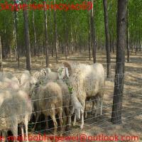 grassland wire mesh/farm fence (2015 Hot sale)
