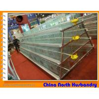 High quality poultry farm equipment for sale