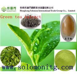 China 100% natural green tea extract egcg bulk supply -- Gamelliasinensis O. Ktze on sale