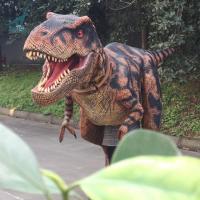 Dorothy The Dinosaur Halloween 3D realistic Mascot Costume for Kids