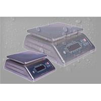 Waterproof Portable Platform Weighing Scale S S Housing With Double LED Display