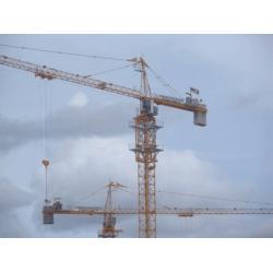 China Tower Crane QTZ80-TC5613 max load 8t--minglongmachinery@gmail.com on sale