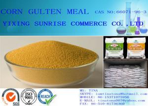 China Corn Gluten Meal Golden Yellow Grain CAS 66071-96-3 For Animal Husbandry supplier