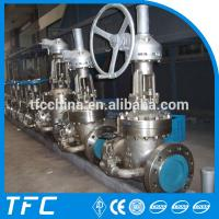 24 inch 300lb A351 Gr. CF8M stainless steel gate valve