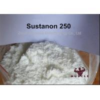 Yellow Liquid Sustanon 250 Powder Injectable Anabolic Steroids 400mg/ml for Mass Gaining