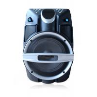 Professional Small 6.5 Inch Rechargeable Bluetooth Pa Speaker And Mic System