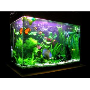 Mini plastic acrylic aquarium fish farming tank for sale for Acrylic fish tanks for sale