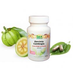 Does weight loss pill Garcinia Cambogia work
