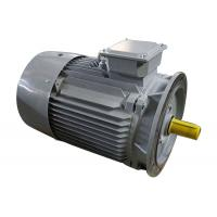 Y2-132M1-2  3 Phase Induction Motor Cast Iron  10kw Small Variable Speed