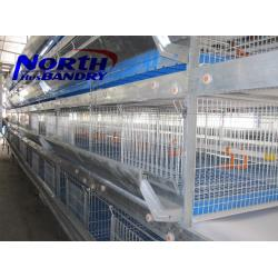 China chicken cage, laying battery hens cage, poultry farming equipment on sale