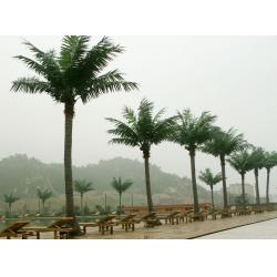 China 2014Artificial coconut trees/Fake coconut trees/Artificial plants on sale