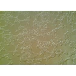China Waterproofing Natural Exterior Wall Stucco Artistic Paint / Coating on sale