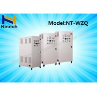 SS Housing Ozone Generator Water Purification In Sewage Water Treatment 10g - 60g