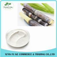 Natural Sugar Cane Wax Extract Octacosanol Powder