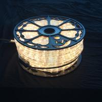 AC110V / 220V LED rope light 50M roll packing Christmas decorative lighting diameter 13mm Clear PVC housing multi color