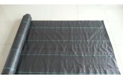 bache noire agricole maison design. Black Bedroom Furniture Sets. Home Design Ideas