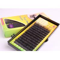 Black Lash Queen Eyelash Synthetic Hair Eyelash Extension 0.15mm Roughness Lash