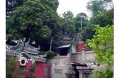 Macau Festivals