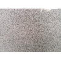 Indoor / Outdoor Granite Tiles , Light Grey Hard Honed Granite Floor Tile