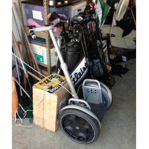 Electric Cargo Trike Segway Tourism Courier Patrol Ems