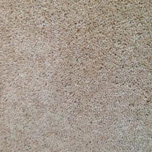 Machine Washable 50 Polyster Wool Blend Cut Pile Carpet Gy Floor Carpets