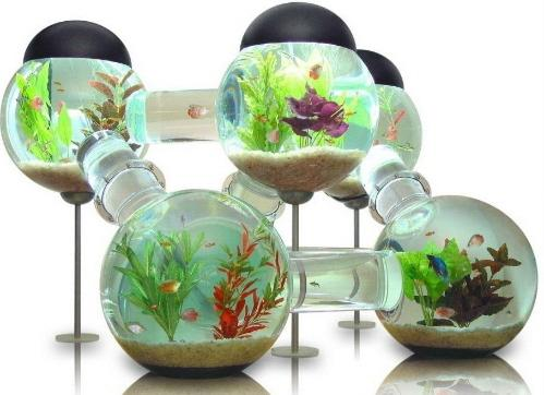 New wall hanging mounted fish tank betta bubble for Bubble wall fish tank