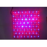 Newest hydroponics lighting 15W 225PCS chips SMD red and blue light LED Grow light for flowering plant