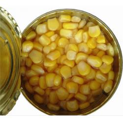 China Factory Price New Season Vegetarian Tinned Yellow Sweet Corn in Brine Professional Supplier on sale