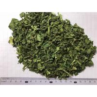 AD Dehydrated Spinach Flakes 9x9mm New Crop with ISO, HACCP, FDA certificates