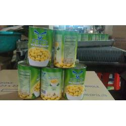 China Factory Price NEW SEASON FORTOP BRAND Canned Mushroom Whole in Brine N.W.800G,D.W.400G on sale