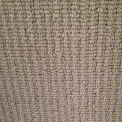 Wool wall to wall carpeting wool wall to wall carpeting for Wool carpet wall to wall