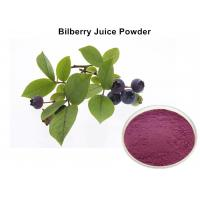 No Foreign Pigments Bilberry Fruit Powder, Organic Bilberry Juice Powder Anti - Oxidant