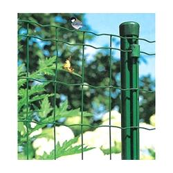 China Green Wire Mesh fence green PVC coated wire fencing on sale