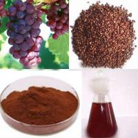 Grape Seed Extract with Reddish Brown powder for Anti-aging