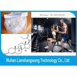 China Healthy Testosterone Propionate, 57-85-2 Pharmaceutical Raw Materials for Bodybuilding on sale