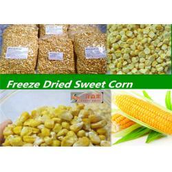 China Classic Organic Freeze Dried Sweet Corn / Juiciest Bulk Organic Baby Corn on sale