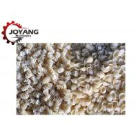 Single Screw Extruder Industrial Pasta Machine Macaroni Processing Machine