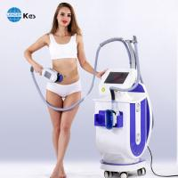 2 Handles Cryolipolysis Machine , Fat Freezing Weight Loss Machine MED-340