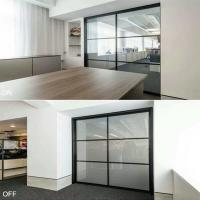 privacy glass door panels  ebglass