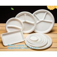 Biodegradable Disposable Sugarcane Bagasse Party Plate,Eco-friendly sugarcane bagasse paper plate/disposable compostable