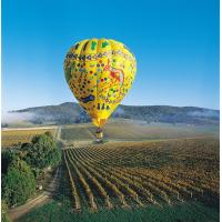 Colorful Outdoor Inflatable Hot Air Balloon For Tourism , Hot Air Balloon Flights